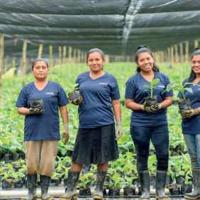 Chiquita tackles the challenge of empowering women