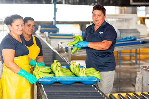 Chiquita tackles the challenge of empowering women - 5