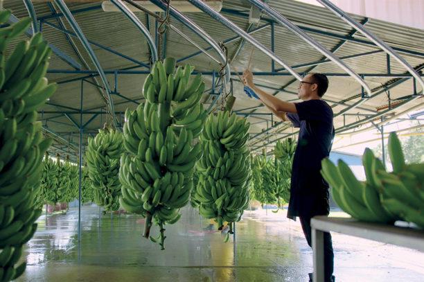 Farmer's code Sustainability