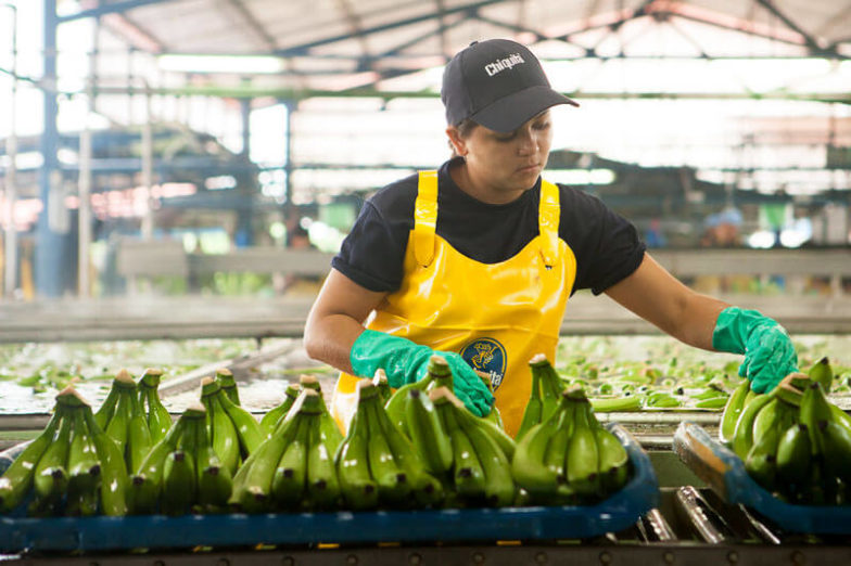 Water footprint management on Chiquita farms saves 1.8 billion liters of water each year - 1