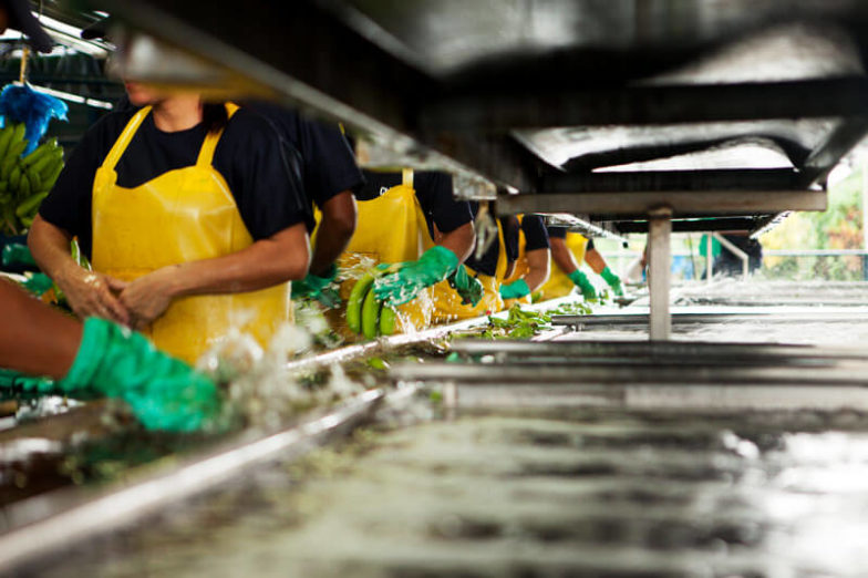 Water footprint management on Chiquita farms saves 1.8 billion liters of water each year - 2