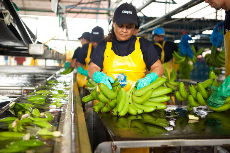 Water footprint management on Chiquita farms saves 1.8 billion liters of water each year - 3