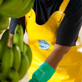 Chiquita and the UN sustainable development goals: our commitment for a sustainable planet